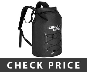 Icemule Pro Backpack Review