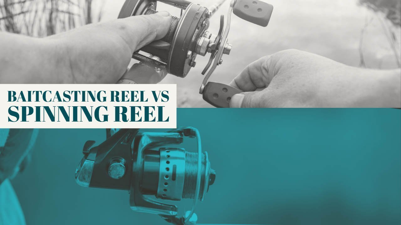 Baitcasting Reel VS Spinning Reel