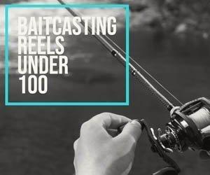 Baitcasting Reels Under 100