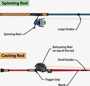 Casting Rod vs Spinning Rod