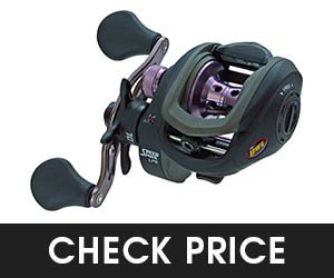 7 - Lews SPEED SPOOL Baitcasting Reel