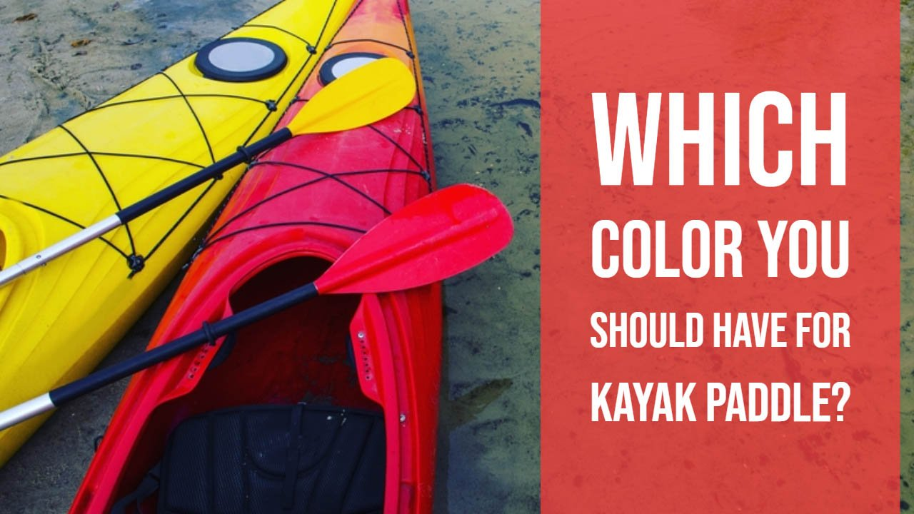 Kayak Paddle Color Guide
