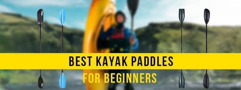 Best Kayak Paddles for Beginners