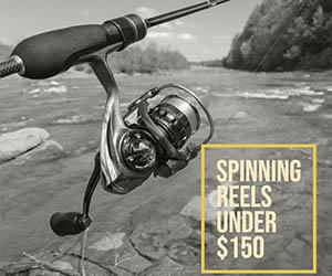 Spinning Reels Under 150