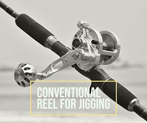 Conventional Reel for Jigging