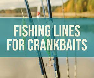 Fishing Lines for Crankbaits