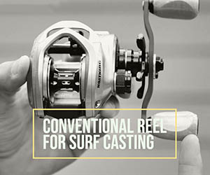 Conventional Reel For Surf Casting