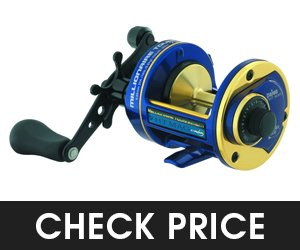 Daiwa M7HTMAG Cast Conventional Saltwater Reel