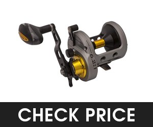 Fin-Nor Lethal Star Conventional Surf Casting Reel