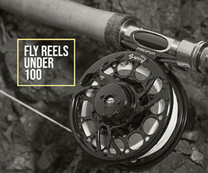Fly Reels Under 100