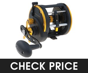 Penn Squall LevelWind Saltwater Fishing Reel