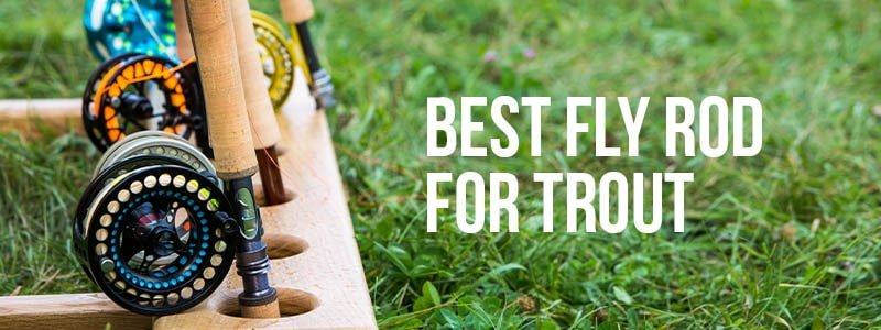 Best Fly Rod For Trout