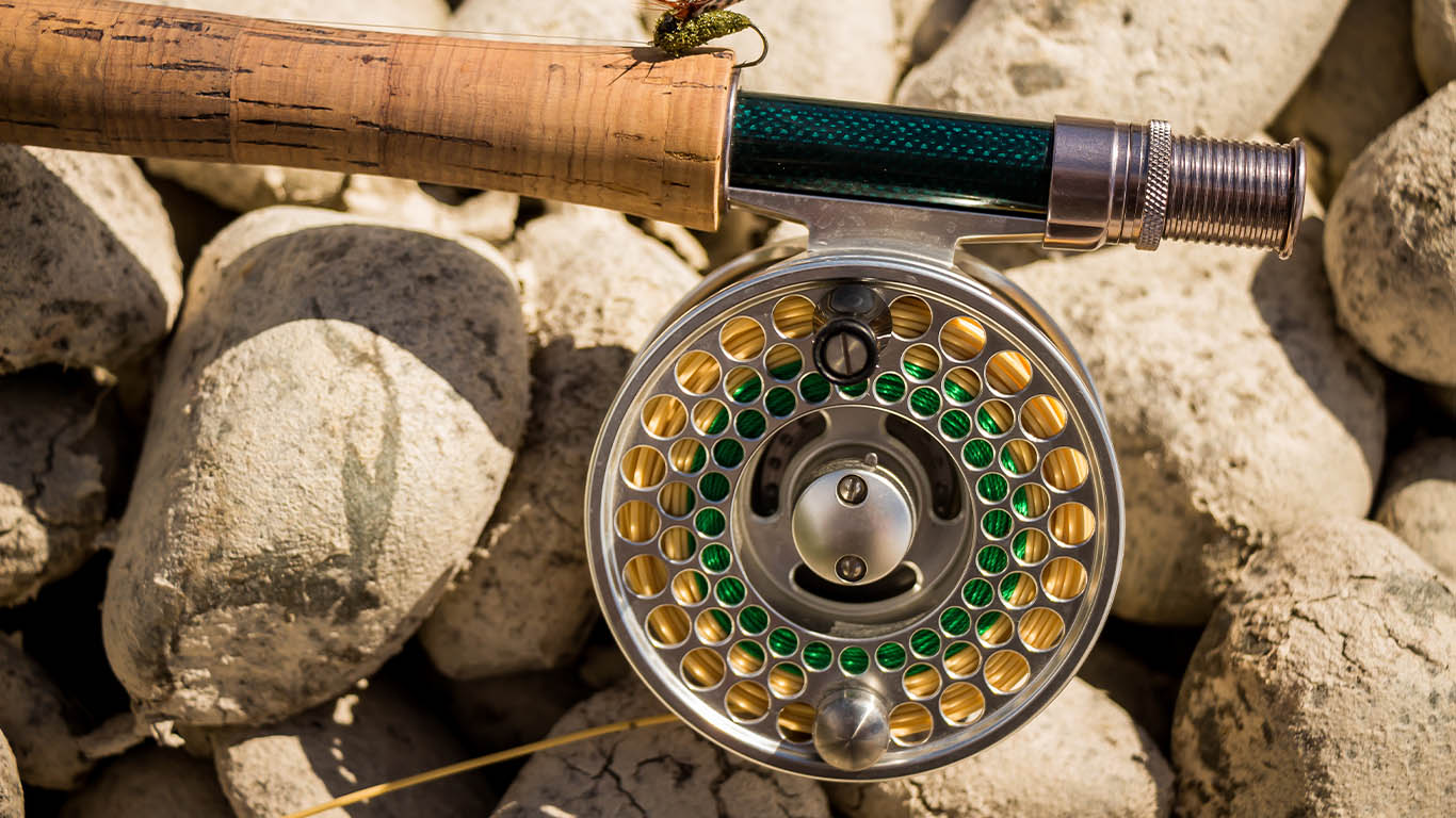 Fly Rod For Trout Buying Guide